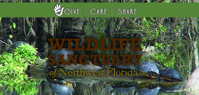 Give Care Share – Wildlife Sanctuary of Northwest Florida