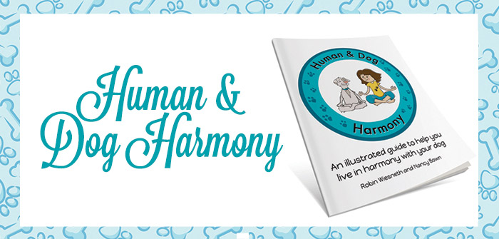 Human & Dog Harmony